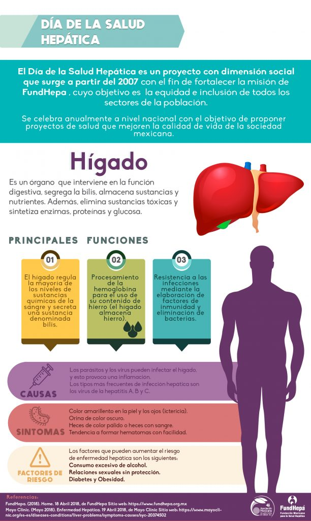 Hepatocarcinoma o cáncer de hígado con 6,300 casos nuevos cada año ...